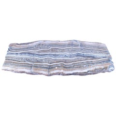 Petrified Wood Slab for Coffee or Console Table