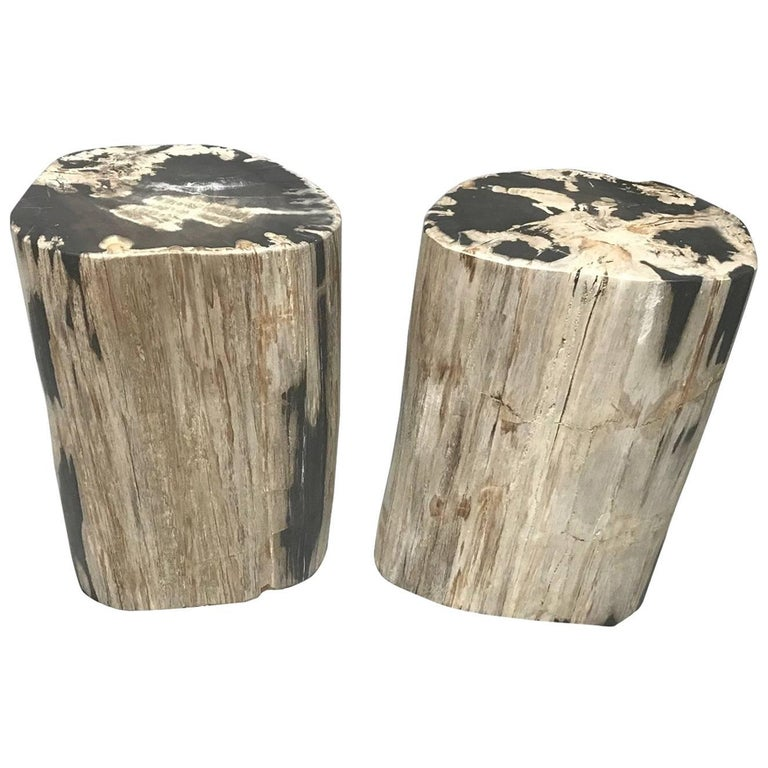 Pair of Polished Petrified Wood Side Tables