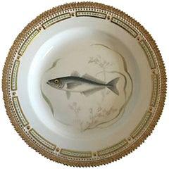 Flora Danica Fish Dinner Plate #3549