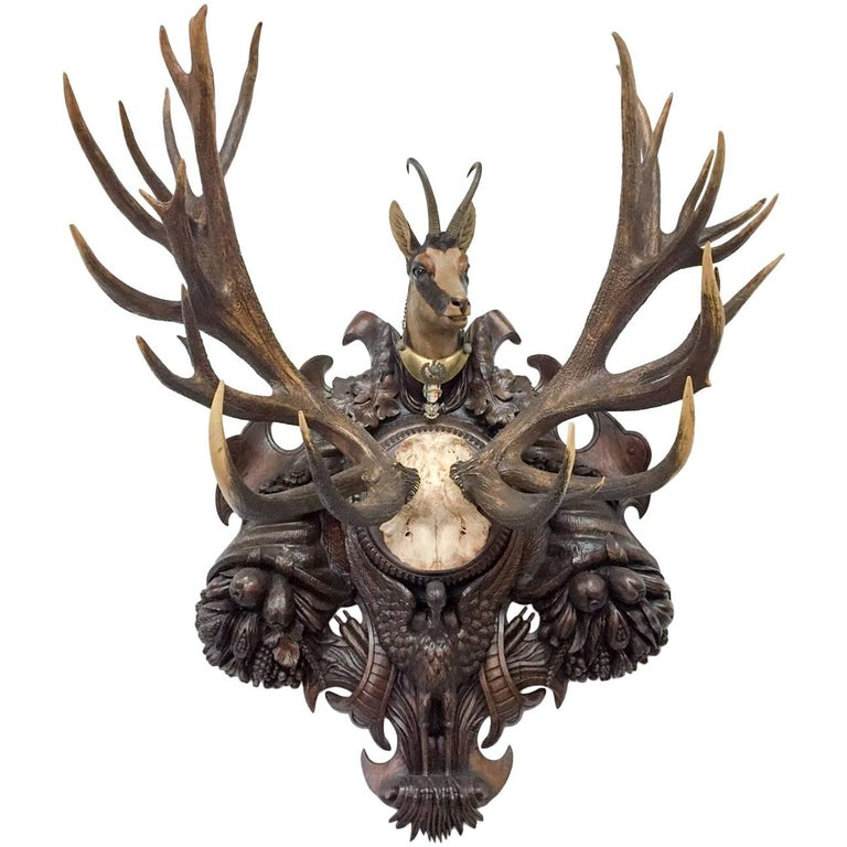 19th Century Habsburg Red Stag & Pyrenees Chamois Trophy on Black Forest Plaque