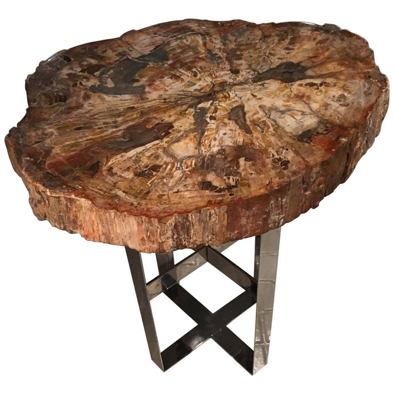 Cocktail Table with Fossil top on steel base. Prehistoric Period