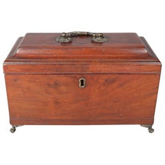 18th Century Antique English Regency Mahogany Claw and Ball Footed Tea Caddy