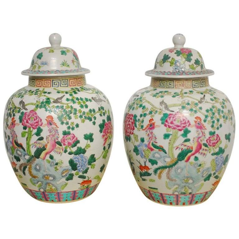 Pair of Chinese Famille Rose Porcelain Ginger Jars