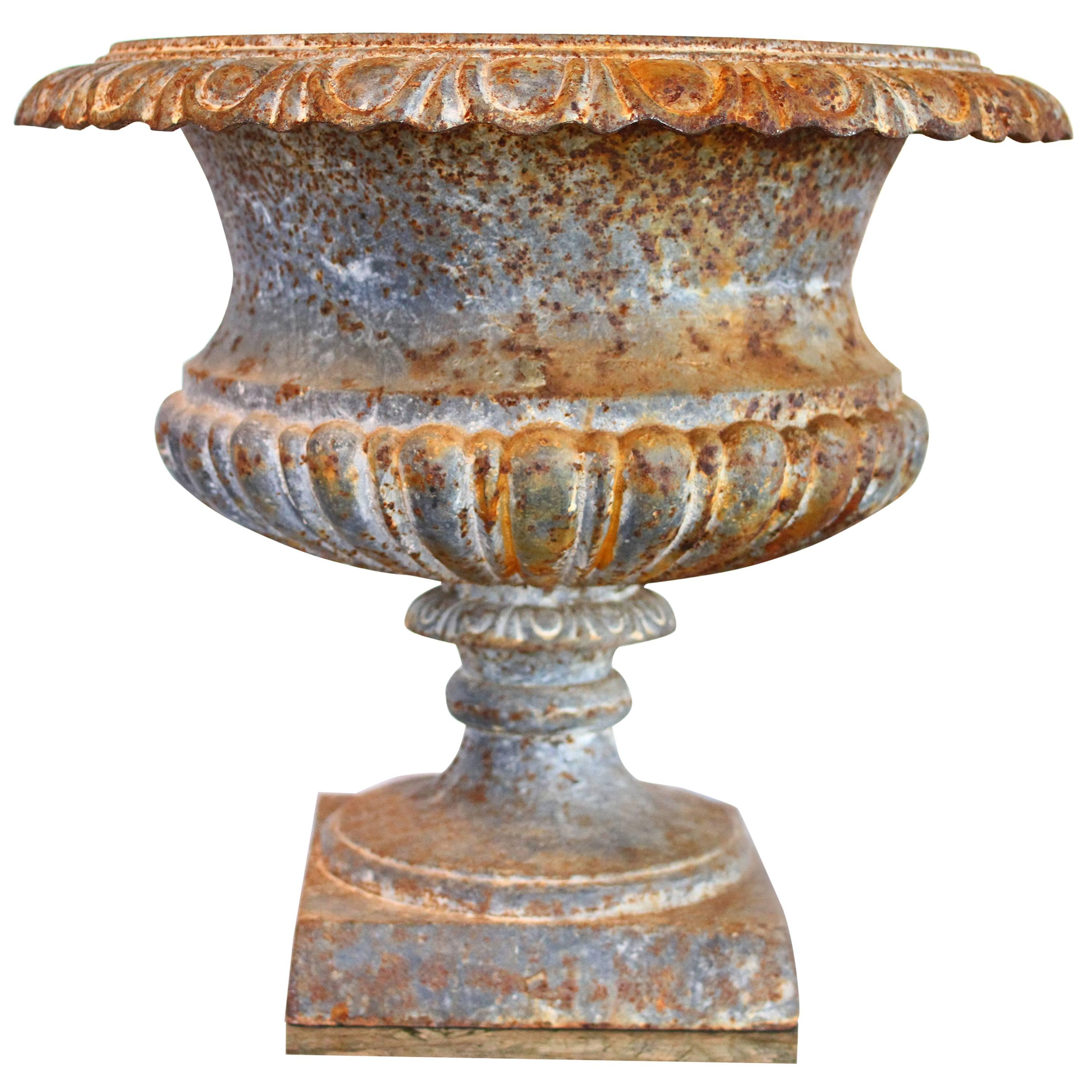 Gorgeous 19th Century French Cast Iron Garden Urn With Egg And Dart Rim For  Sale