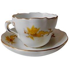 Meissen Porcelain Golden Dragon Teacup and Saucer