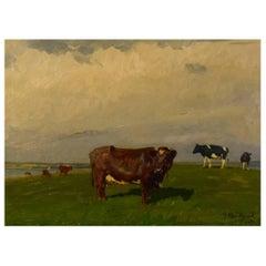Gunnar Bundgaard, Cows on the Field, Oil on Canvas