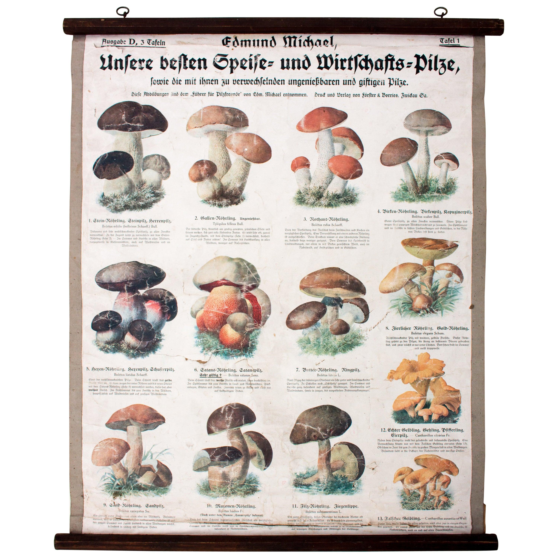 Großzügig Stein Küchenboden Bilder - Ideen Für Die Küche Dekoration ...