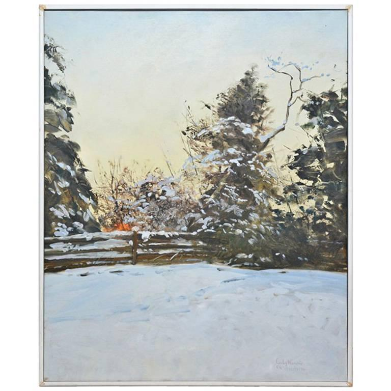 Snowy Bank Redwood