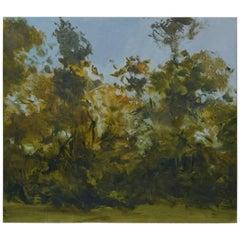 Sunny Treescape