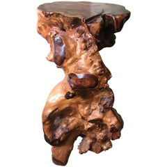 Unique Natural Organic Burl wood Flower and Display Table