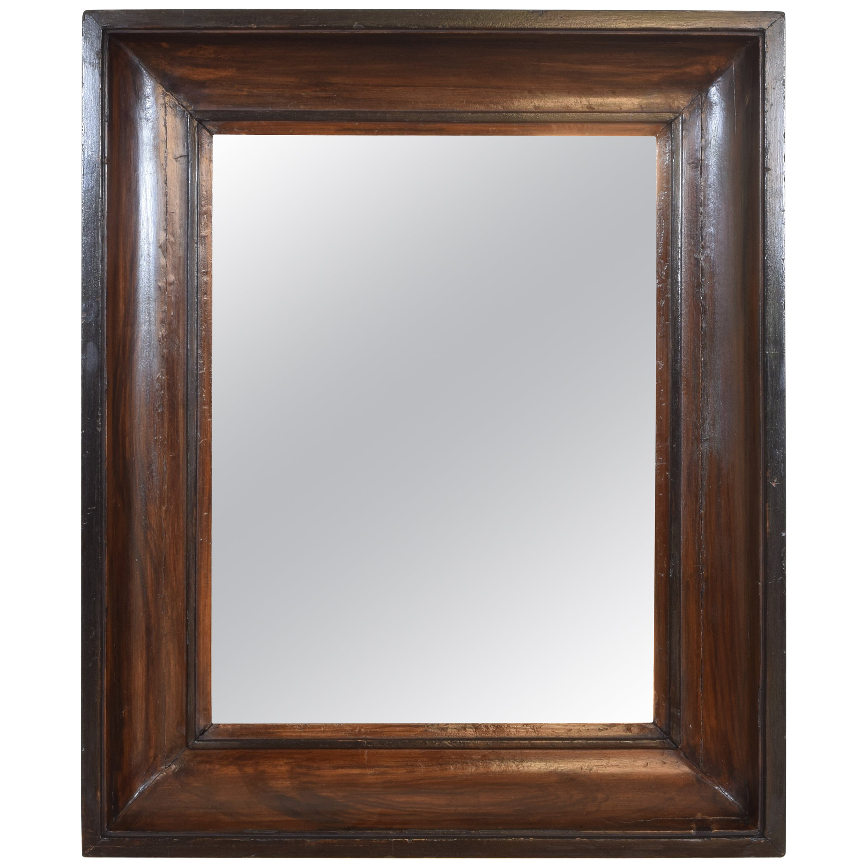French Faux Grain Painted and Ebonized Wall Mirror, 19th cen.