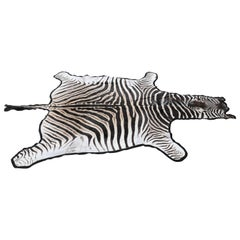 Fine Burchell Zebra Rug