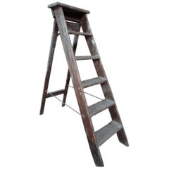 1900s French Vintage Fruit Picking Painting Ladder Library Ladder /Shop Display