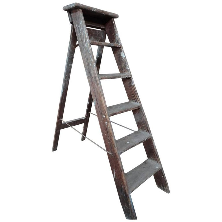 1900s French Vintage Fruit Picking Painting Ladder Library