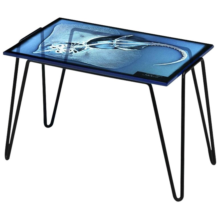 """""""Xraydio 1 Razza"""" Glass and Black Raw Steel Side Table by Moroso for Diesel"""