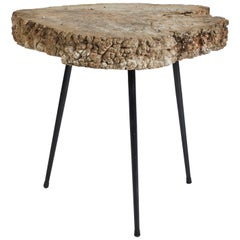 Mid-Century Tree Trunk Table with Slim Metal Legs from France
