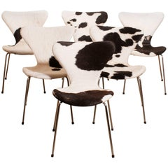 1950s, Cow Fur Leather Model 3107 Dining Chairs by Arne Jacobsen & Fritz Hansen