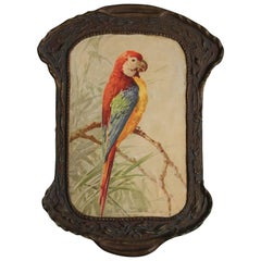 Attractive Antique 1920s Painting of Parrot in Original Frame
