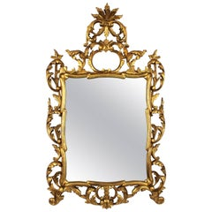 19th Century Spanish Rococo Style Finely Carved Gold Leaf Giltwood Mirror