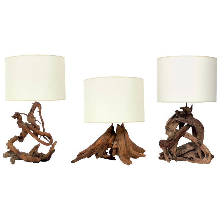 Selection of Sculptural Driftwood Lamps