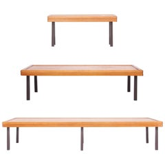 Set of Midcentury Formalist Benches, circa 1960