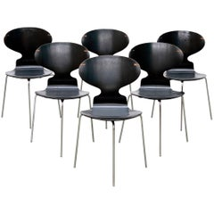Model FH 3100 Ant Chairs by Arne Jacobsen for Fritz Hansen, 1969, Set of Six