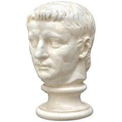 Plaster Model of Roman Head on Classic Base, 20th Century