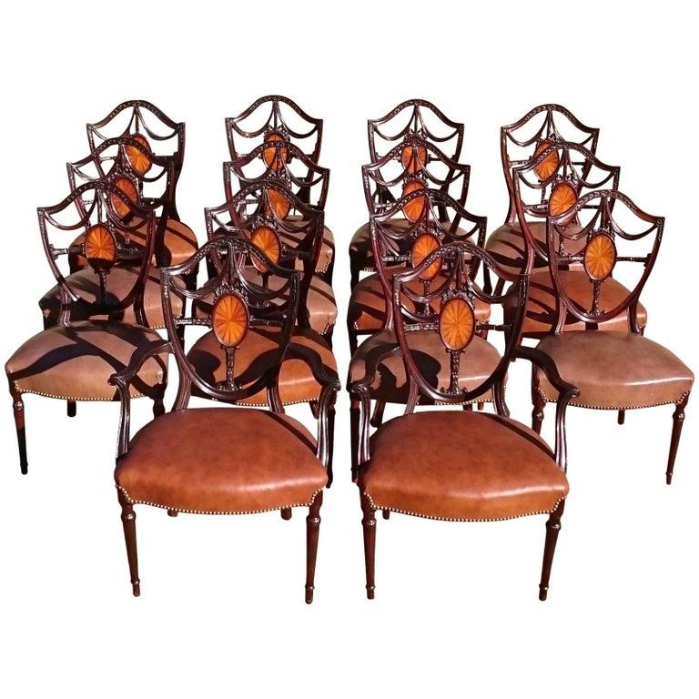 Large Set of 14 Edwardian Period Hepplewhite Mahogany Antique Dining Chairs