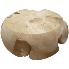 Andrianna Shamaris Bleached Teak Wood Root Coffee Table