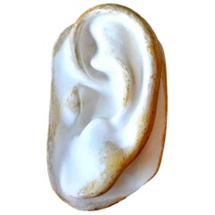 Sculptural Plaster Ear