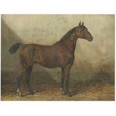 Antique Print of the Holsteiner Horse by O. Eerelman, 1898