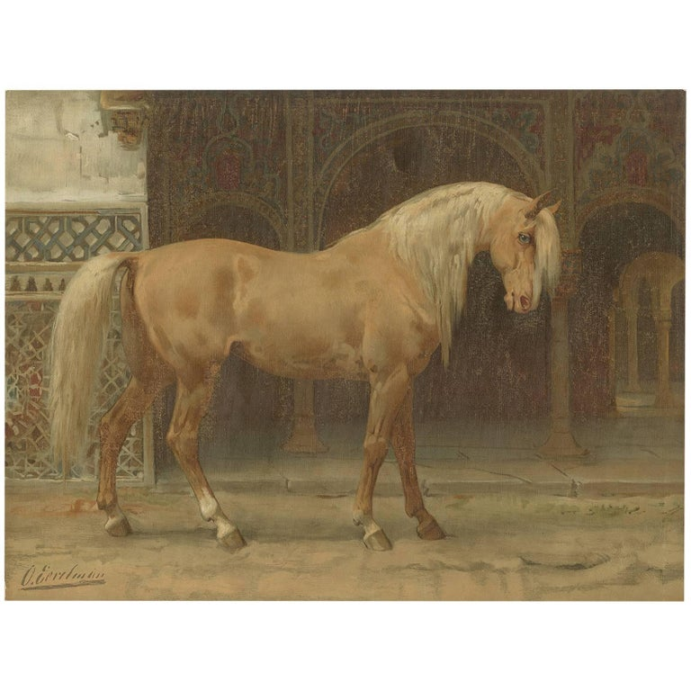 Antique Print of the Andalusian Horse by O. Eerelman, 1898