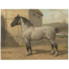 Antique Print of a Breton Horse by O. Eerelman, 1898