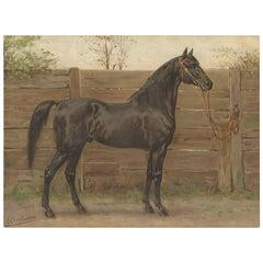 Antique Print of the Trakehner Horse by O. Eerelman, 1898