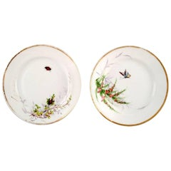 2 antique b & g bing & grøndahl plates. Hand painted with butterfly and insect.