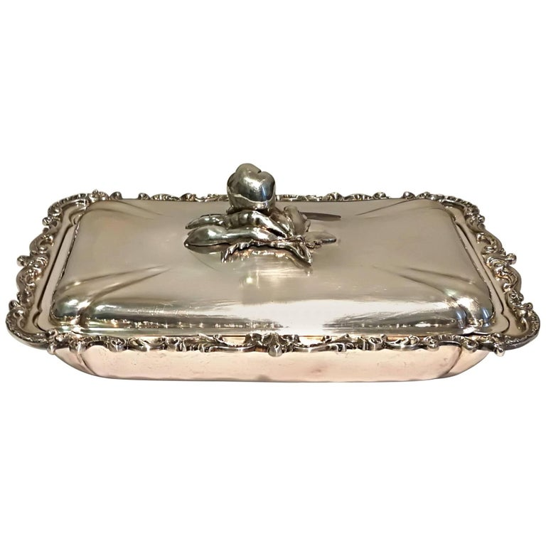 Silver Tray with Top For Sale