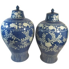 Pair of Chinese Meiping Vases