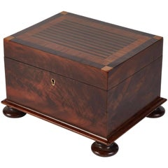 Large Georgian Mahogany Box from Early 19th Century