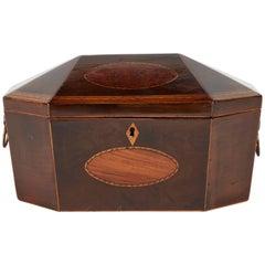 18th Century Box in Burl Yew Wood