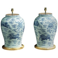 Pair of Blue and White Chinese Vases with Fo Dogs