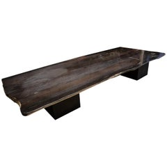 Andrianna Shamaris Super Smooth Petrified Wood Coffee Table or Dining Table