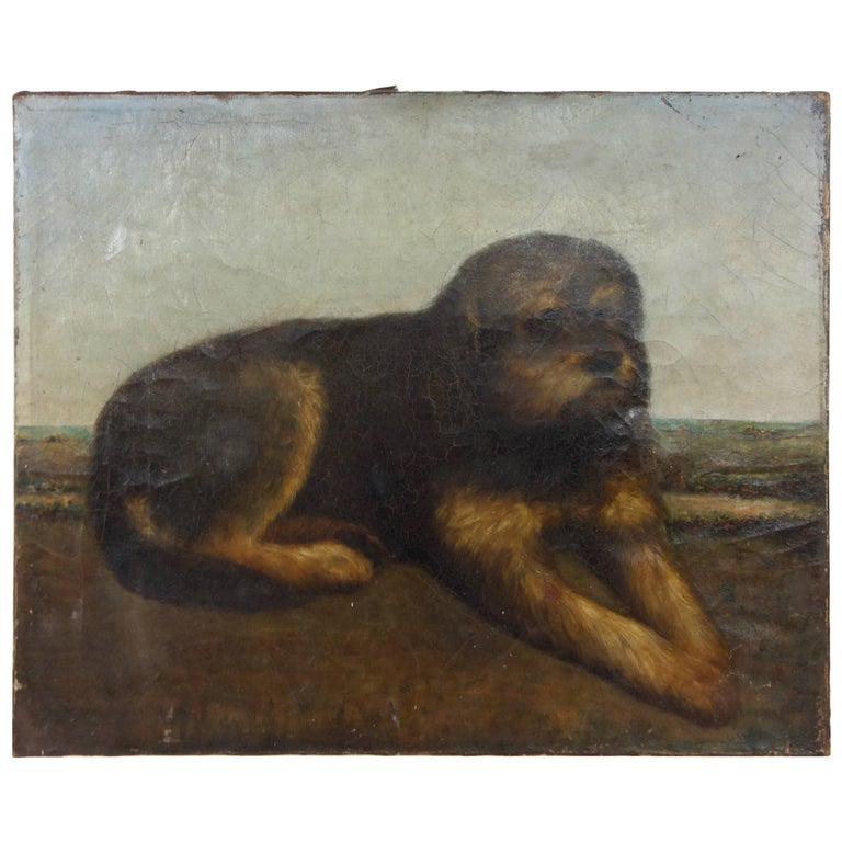 Turn of the Century Portrait of a Pup from France