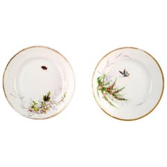 Two Antique Bing & Grondahl Plates, Hand-Painted with Butterfly and Insect