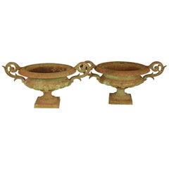 Pair of 19th Century Cast Iron Urns or Jardinieres