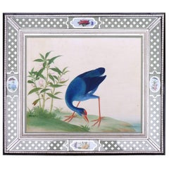 China Trade Large Watercolour Painting of a Bird, circa 1800-1820
