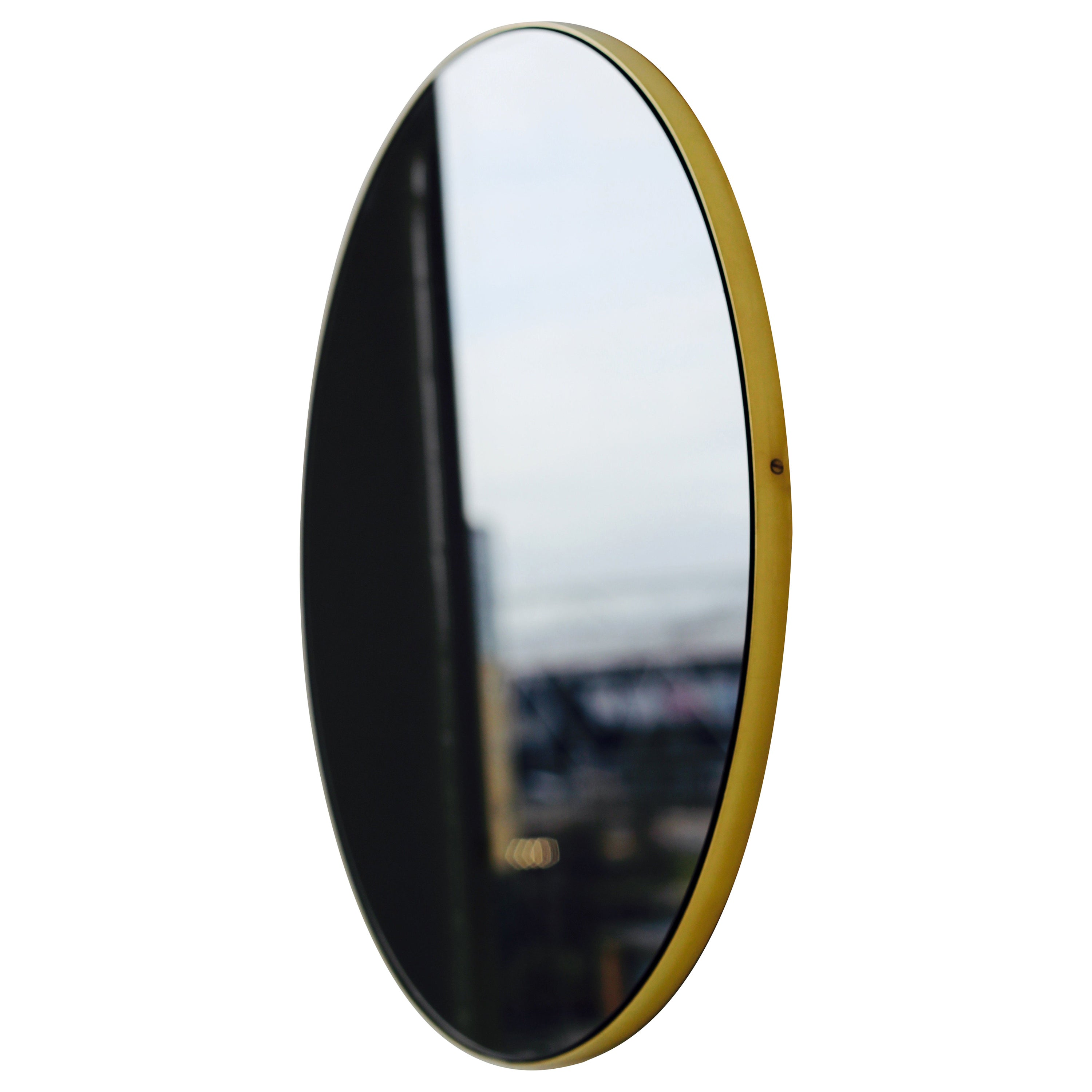 Orbis™ Black Tinted Round Contemporary Mirror with a Brass Frame - Extra-Large