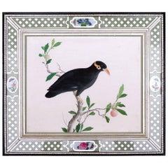 China Trade Large Watercolor Painting of a Bird, circa 1800-1820