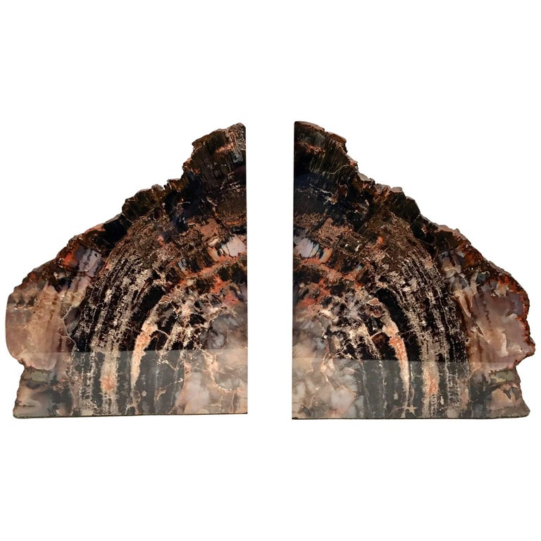 Very Large Pair of Bookmatched Petrified Wood Bookends