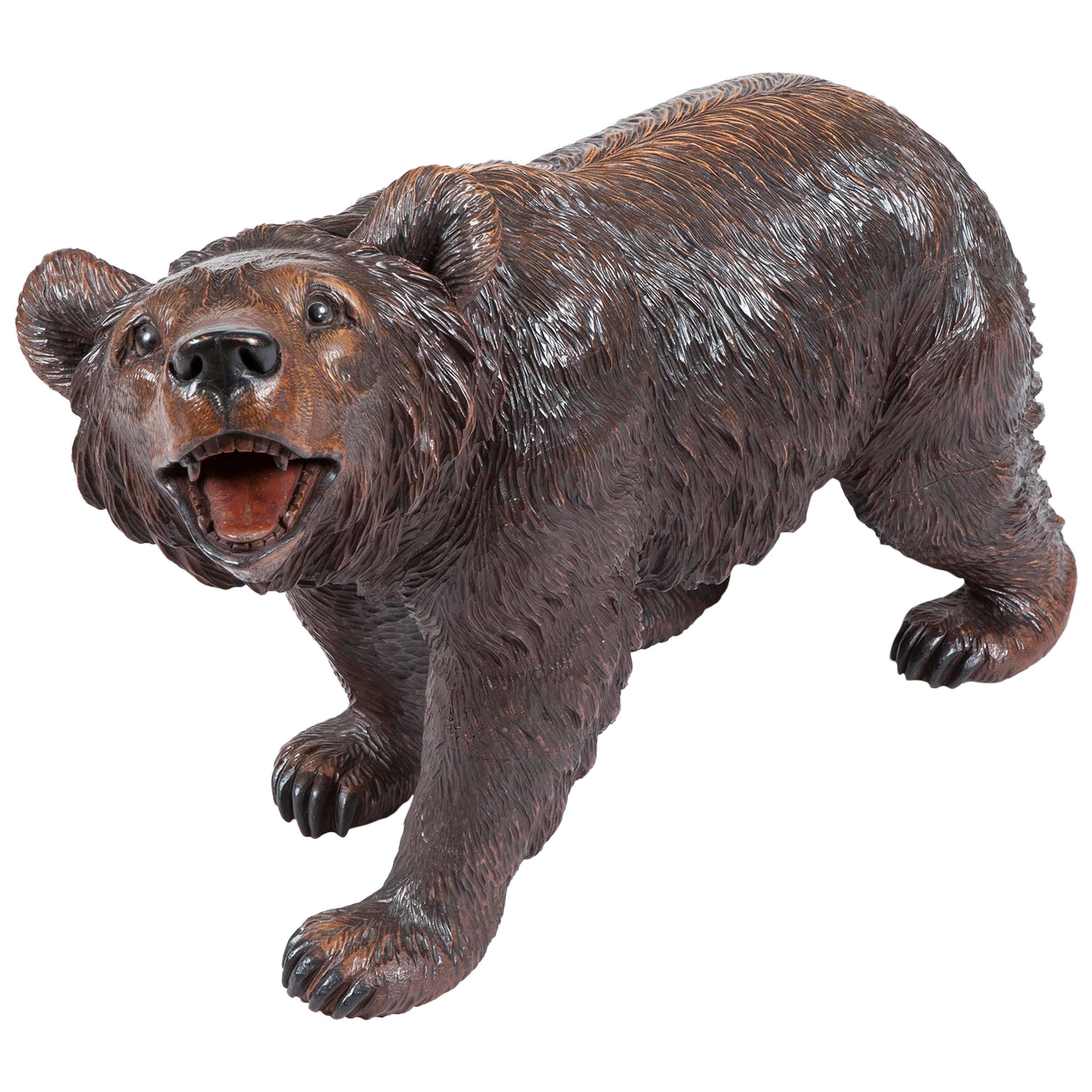 19th Century 'Black Forest' Bear