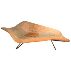 "Rare ""Soloform 5008"" Chaise Lounge by Hans Hartl for Eugen Schmidt"
